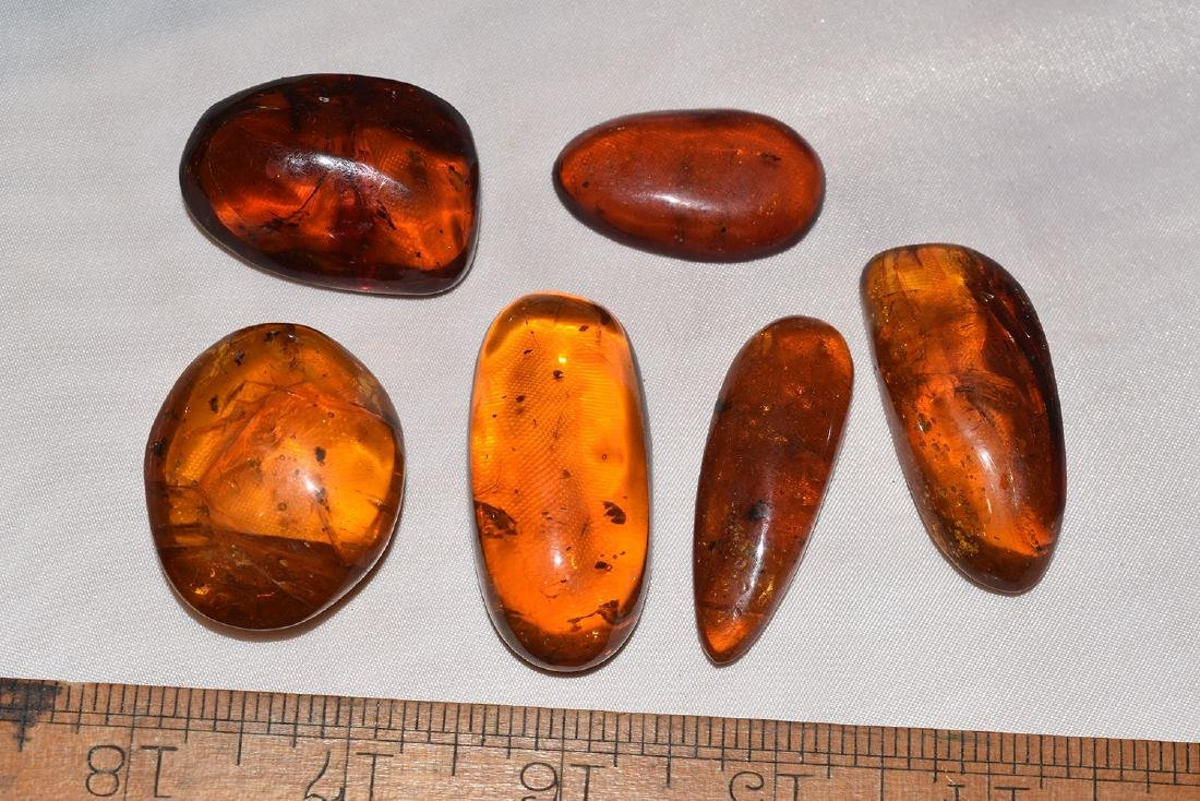 6 Natural Amber Nuggets with possible Insect Inclusions