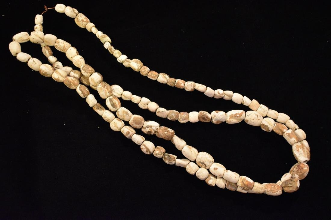 6 foot long Shell Necklace, Ex Tommy Buetell, Meigs Co