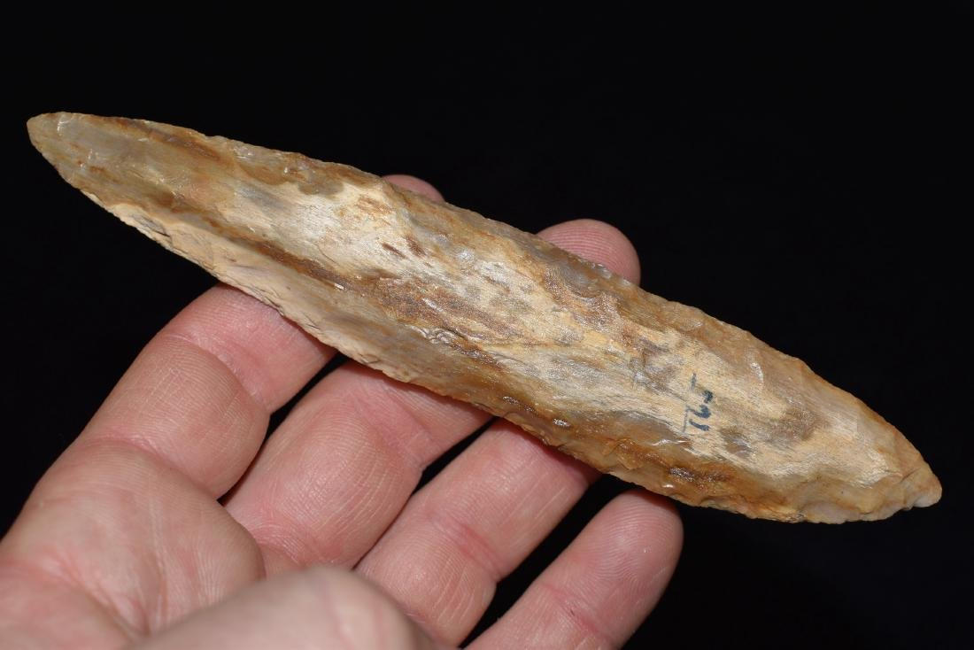"5.3/4"" Petrified Wood Blade, Washington"
