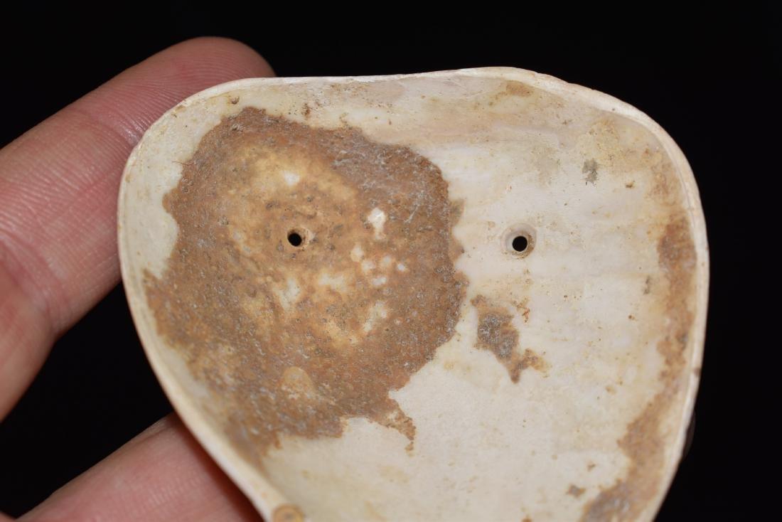 "3.3/16"" Shell mask Gorget, Smyth Co Virginia, Ex Dale - 3"