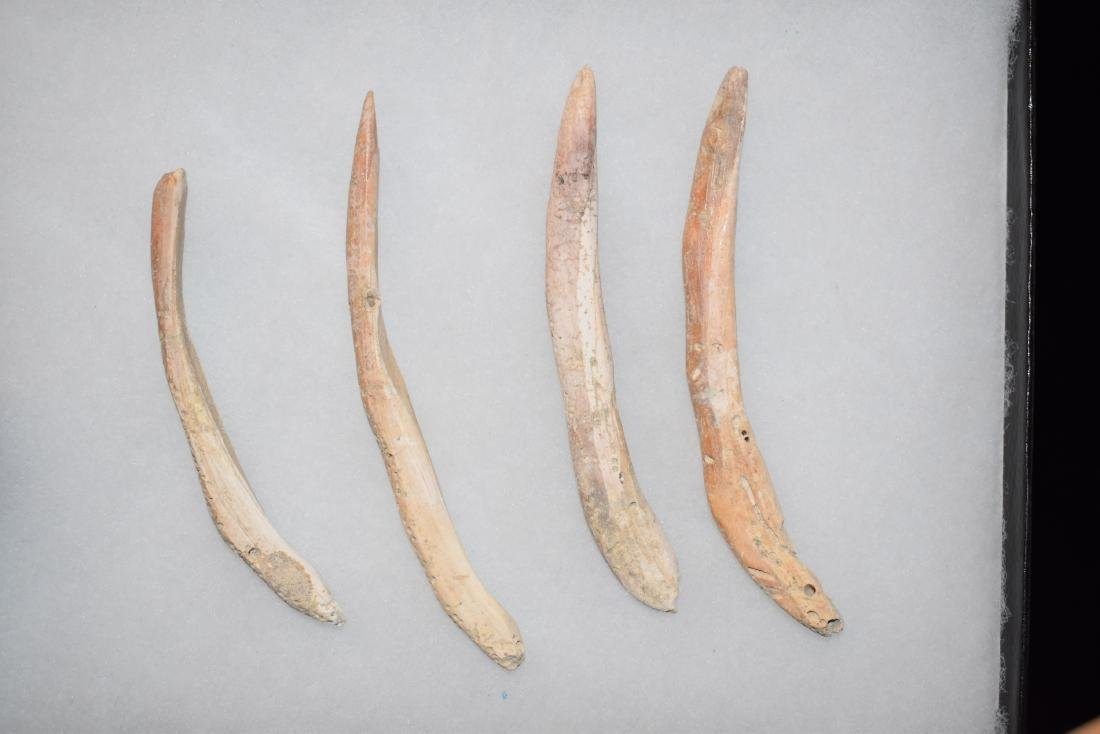 Lot of 4 Spindulus Shell Pre-Columbian Pendants,