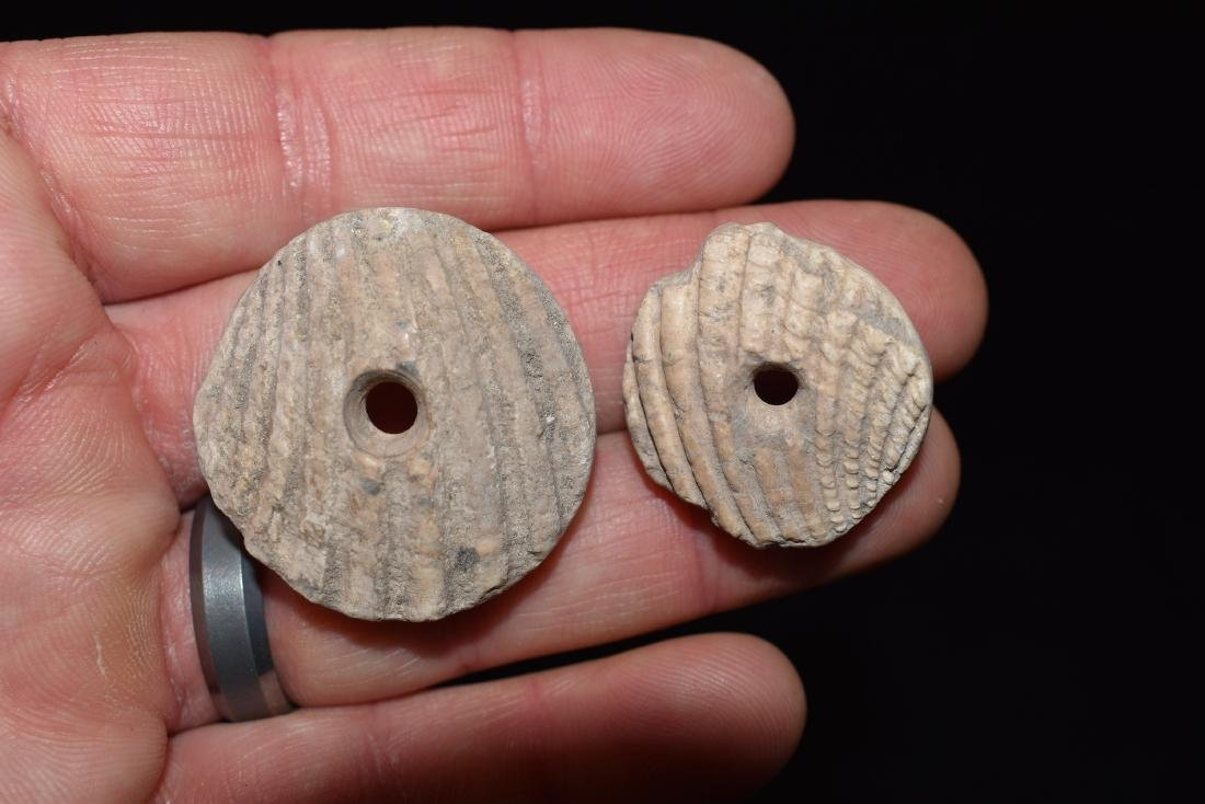Pair of Nice Shell Beads Hohokam / Anasazi Necklace,
