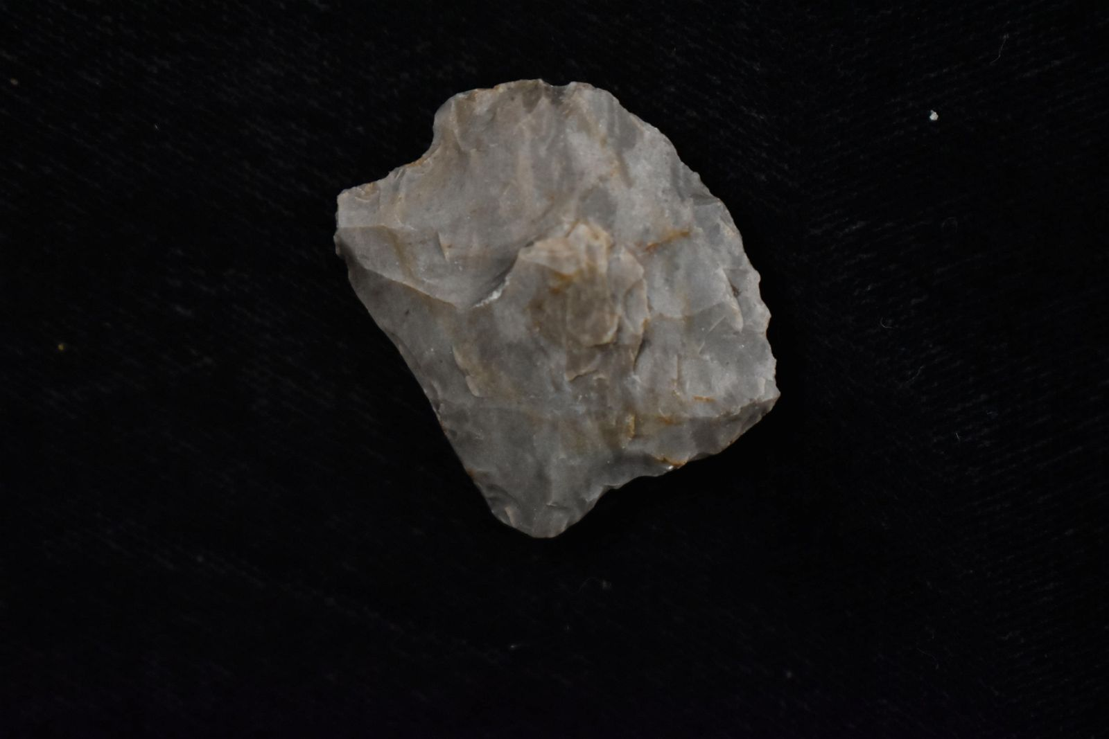 """3/4"""" Blunt Point. Native American Artifact"""