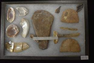 Frame of 11 Shell Tools, OH,  Native American Artifacts