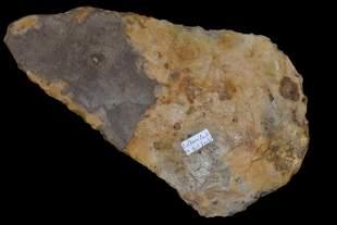 """10 1/2"""" Mill Creek Spade found in Calhoun County,IL ex"""