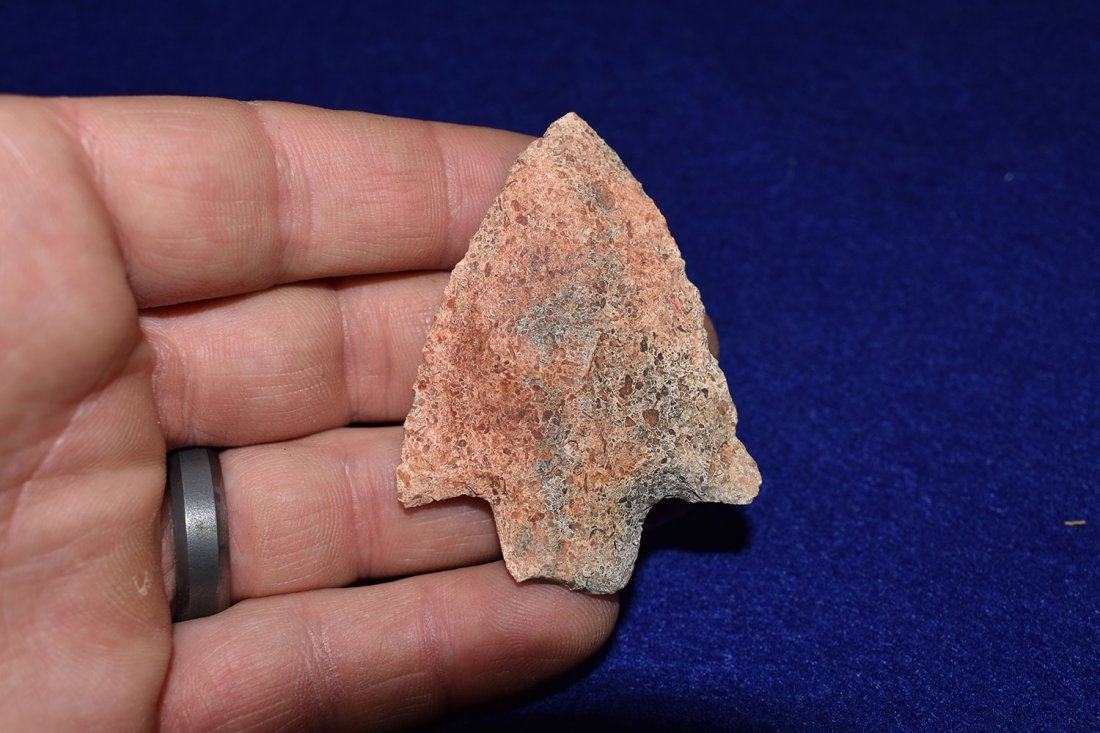 NEWNAN, AGATIZED CORAL WITH GEODE LIKE INCLUSIONS, - 2