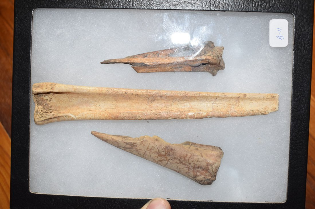 NICE GROUP OF 3 BONE AWLS FOUND AT THE FUERT SITE IN