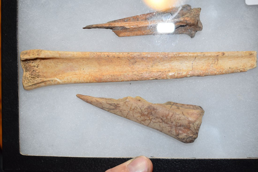 NICE GROUP OF 3 BONE AWLS FOUND AT THE FUERT SITE IN - 3