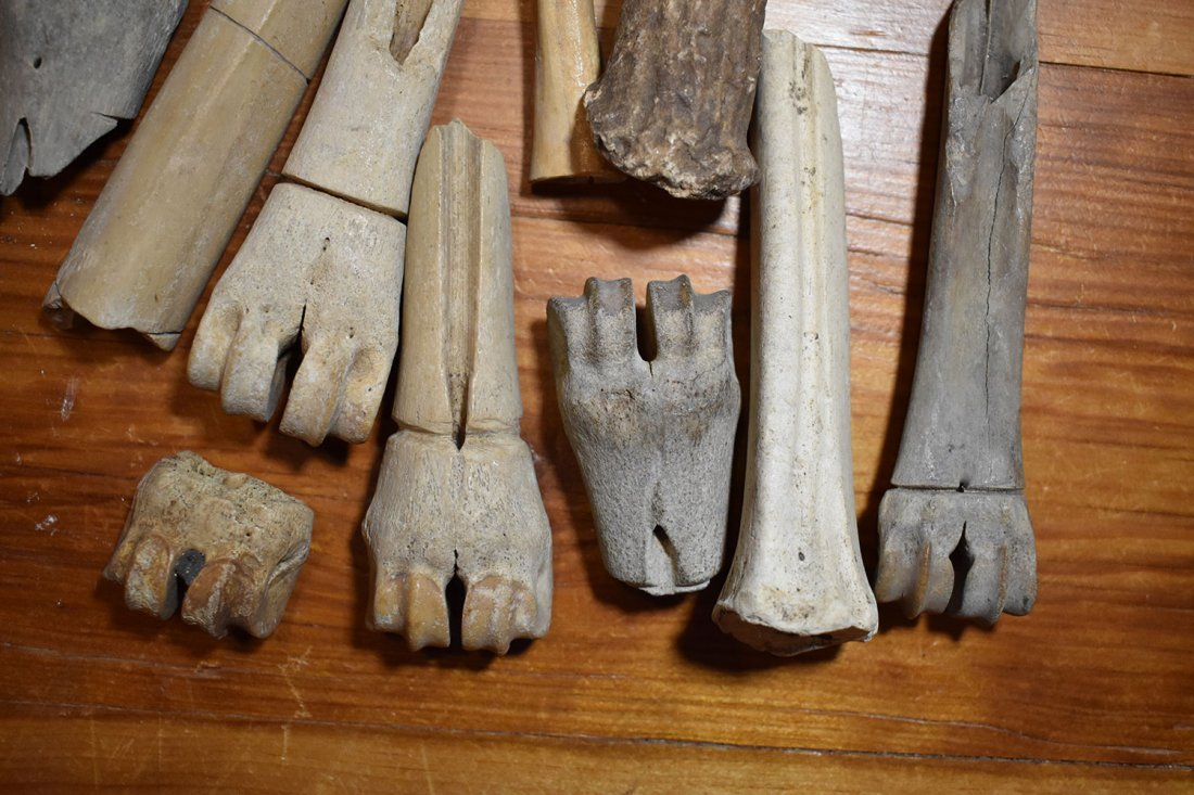 GROUP OF BONE TOOLS & AWLS FROM FUERT SITE.  SCION - 2