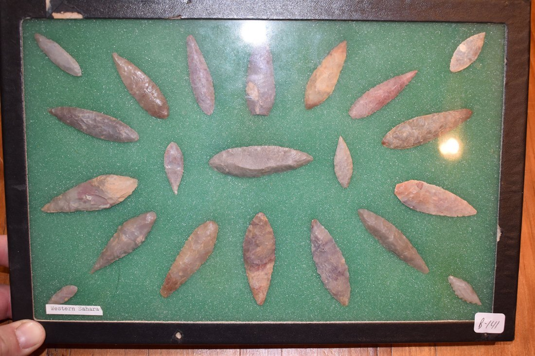 """8  1/2"""" X 12"""" FRAME OF 21 CHOICE NEOLITHIC WILLOWLEAF"""