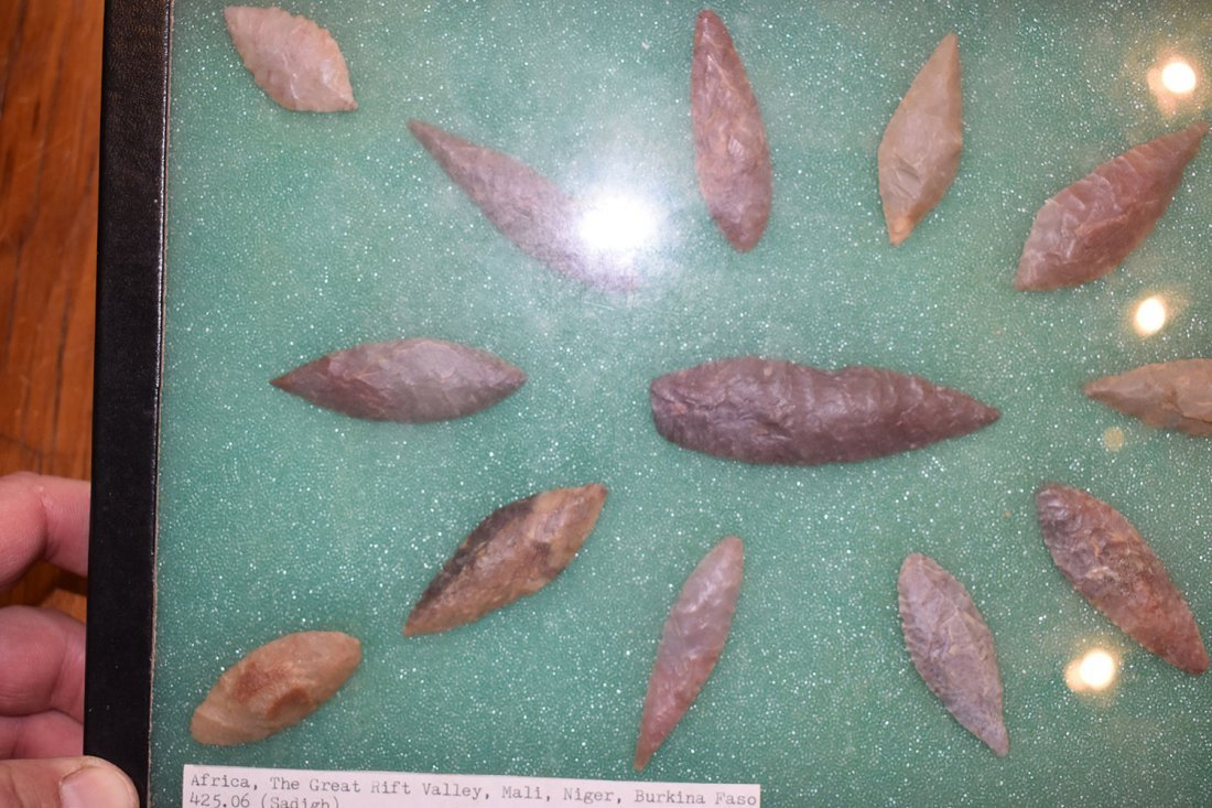 "8  1/2"" X 12"" FRAME OF 15 CHOICE NEOLITHIC WILLOWLEAF - 2"