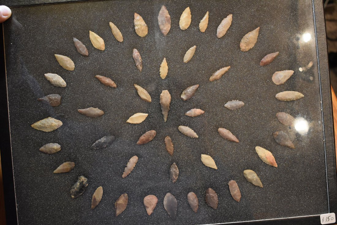 "12  1/2"" X 16"" FRAME OF 50 AFRICAN WILLOWLEAF POINTS,"