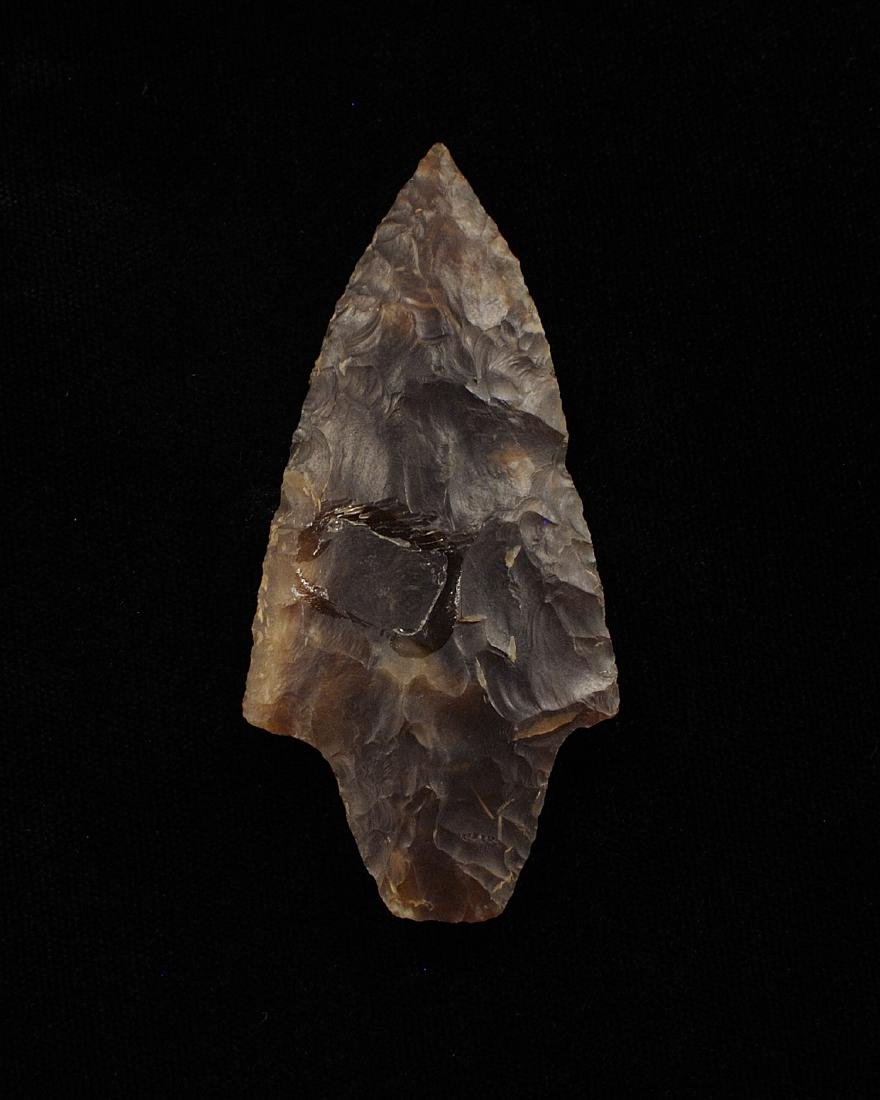 Knife River Flint Dickson, Ralls CO MO, Meadows COA, 3 - 3