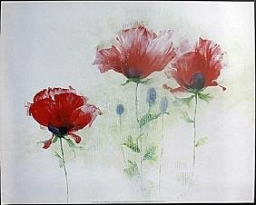 "Fine Art Print ""Red Poppies II"" by Andrea Fontana"