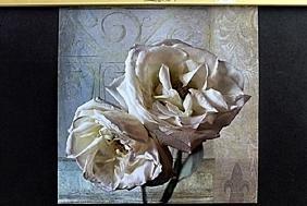 "Fine Art Print ""Modern Rose II"" by Christopher-St."