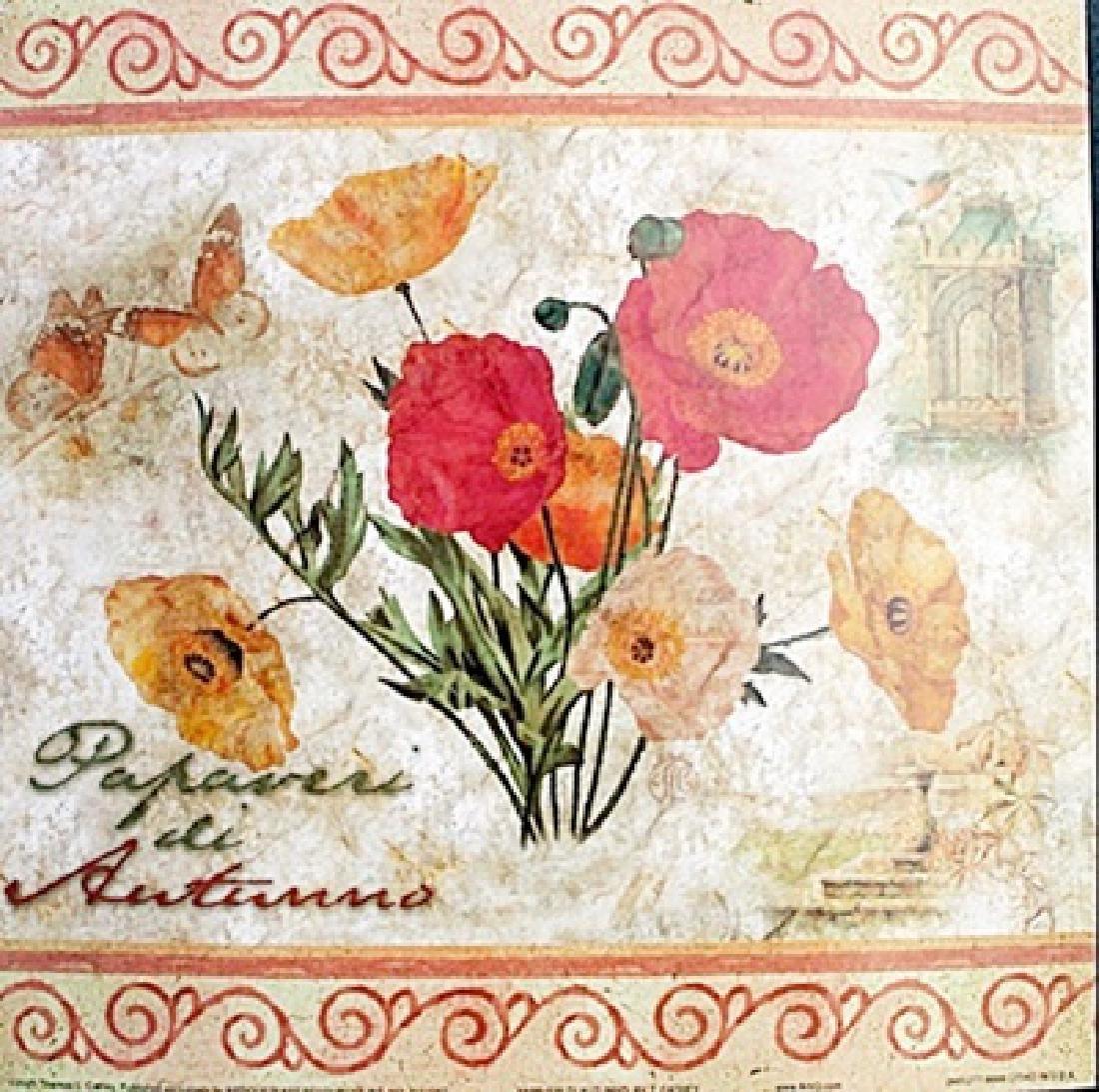 """Fine Art Print """"Papaveri Di Autunno"""" by Thomas Cathey"""