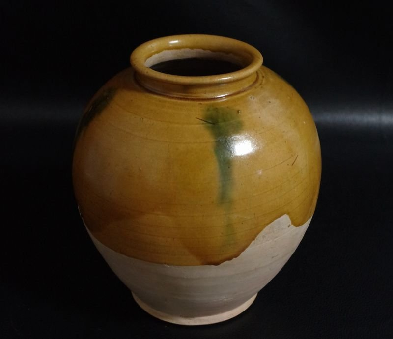 Tang Dynasty Blue And Sancai Vase - 2