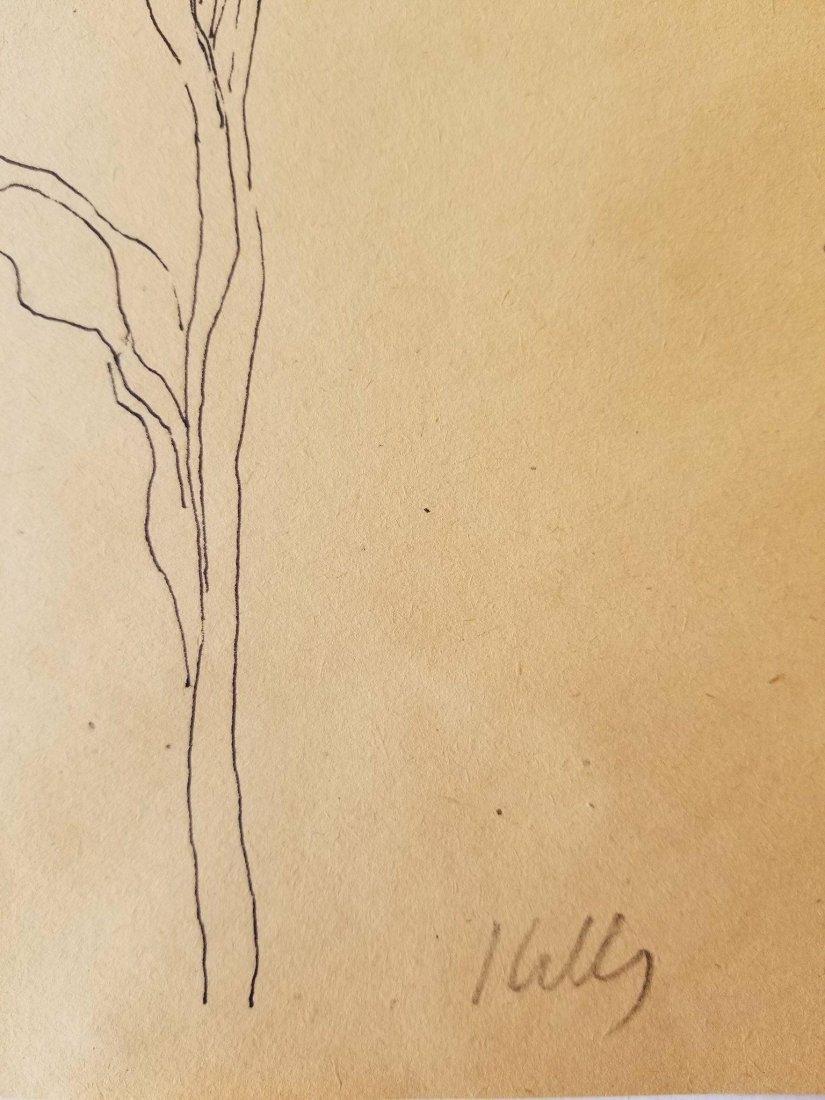 Ellsworth Kelly (1923-2015) Ink on Paper- was American - 2