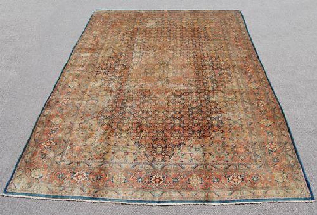 Nicely Contrasted Handmade Egyptian Rug