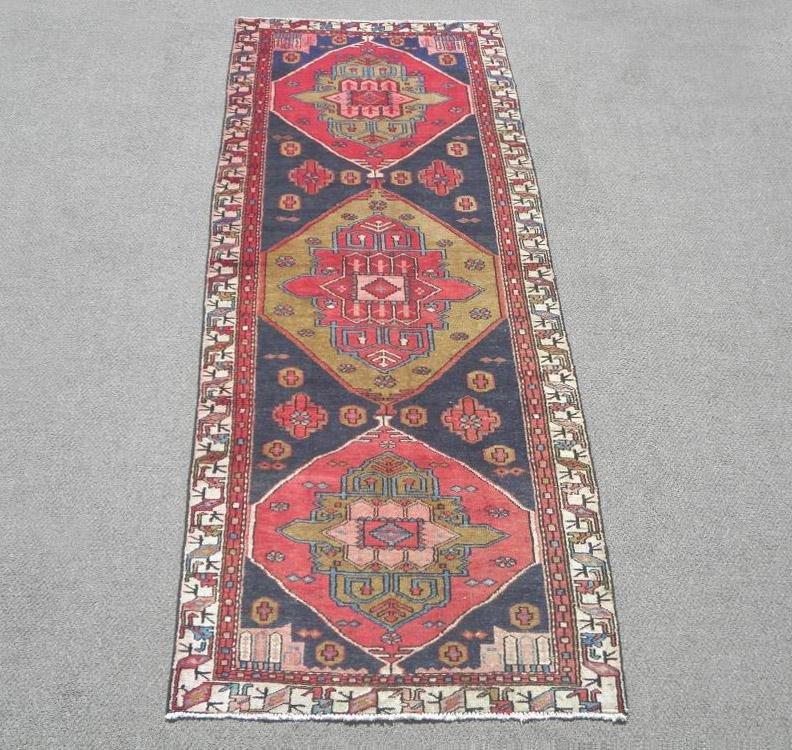 Semi Antique Persian Bakhtiari 10.0x3.11