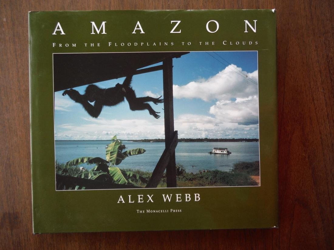 Amazon: From The Floodplains To The Clouds