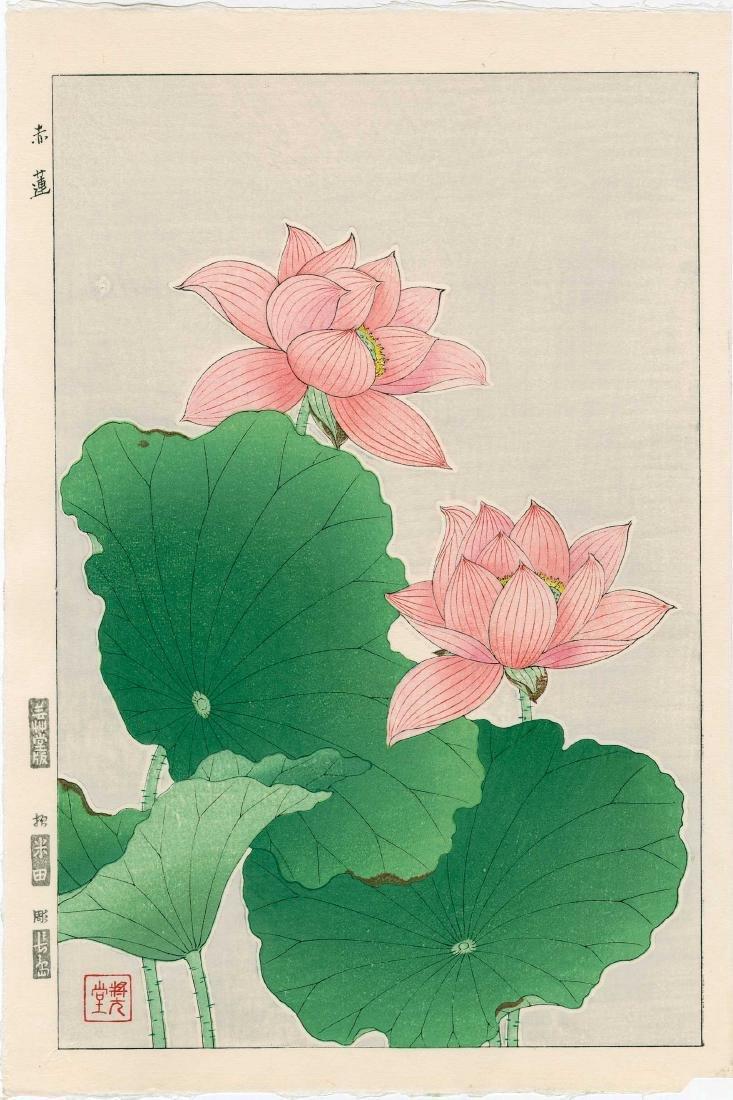 Kawarazaki Shodo: Lotus Blossoms