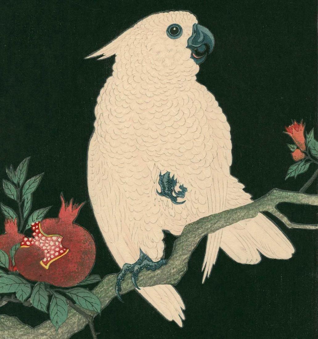 Ohara Koson: Cockatoo on a Pomegranate Branch - 2