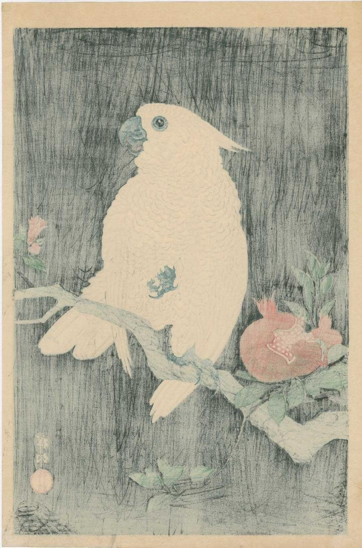 Ohara Koson: Cockatoo on a Pomegranate Branch - 3