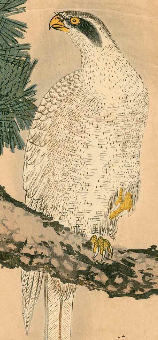 Utamaro: White Eagle on a Pine Branch - 2