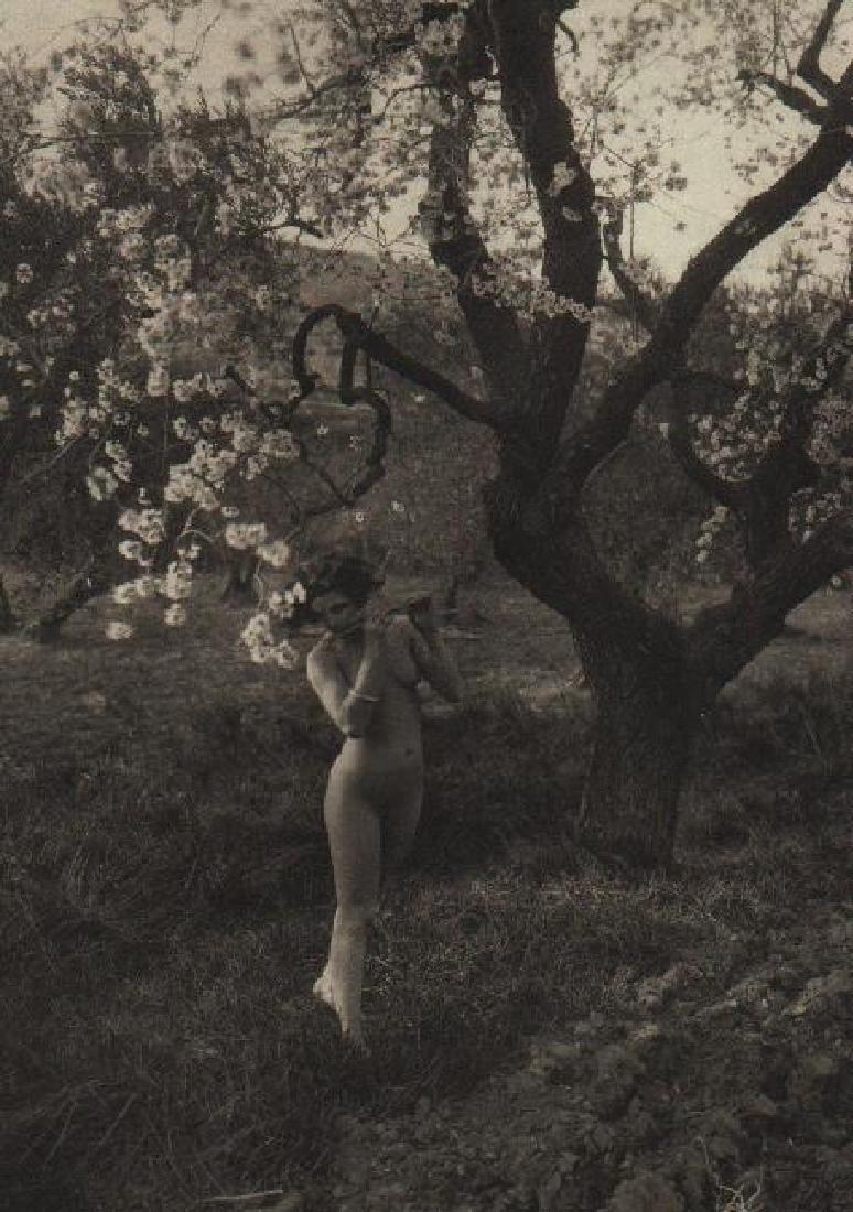 G.L ARLAUD - Etude de Nu - Printemps de Provence