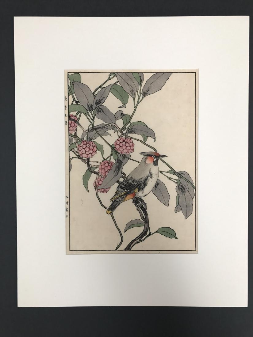 Imao Keinen: Cedar Waxwing from Autumn Album
