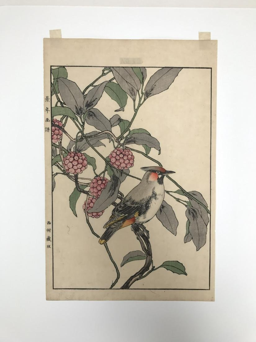 Imao Keinen: Cedar Waxwing from Autumn Album - 2