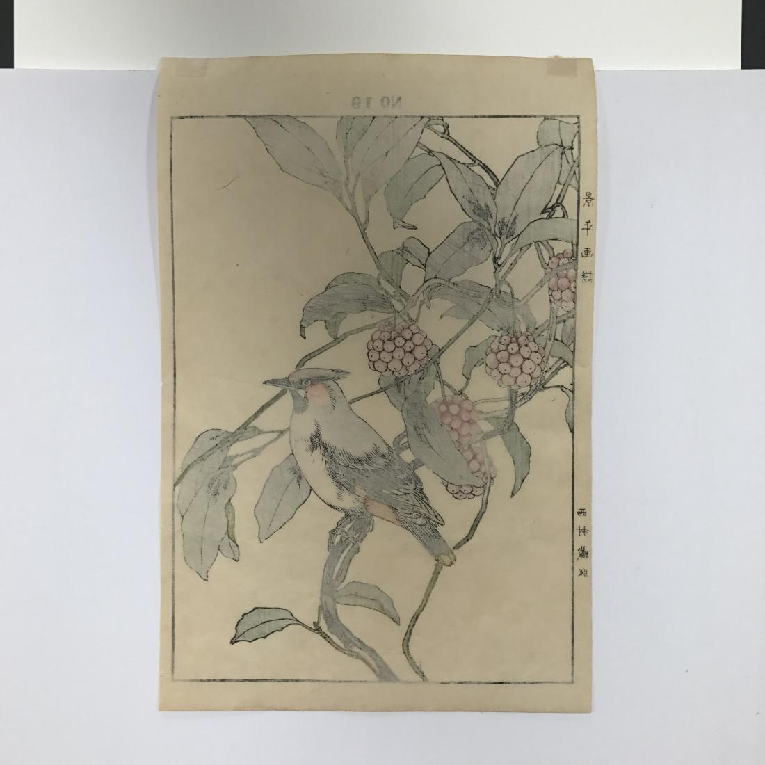 Imao Keinen: Cedar Waxwing from Autumn Album - 3