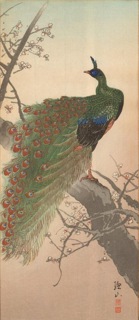 Ito Shozan: Peacock in a Plum Tree