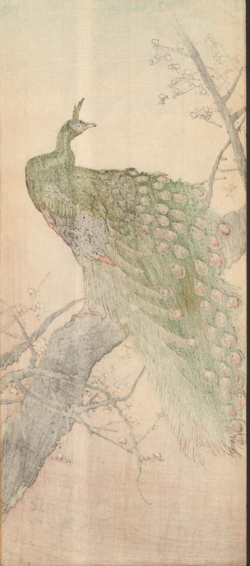 Ito Shozan: Peacock in a Plum Tree - 2