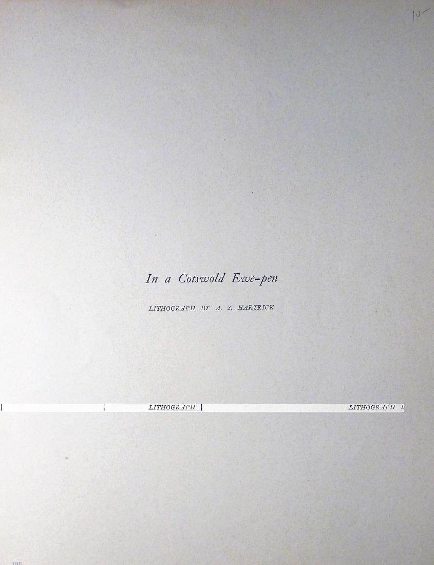 In A Cotswold Ewe-Pen - 2