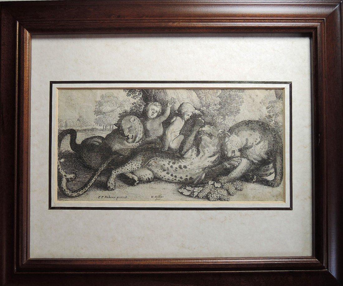 Peter Paul Rubens Etching (Flemish 1577-1640)