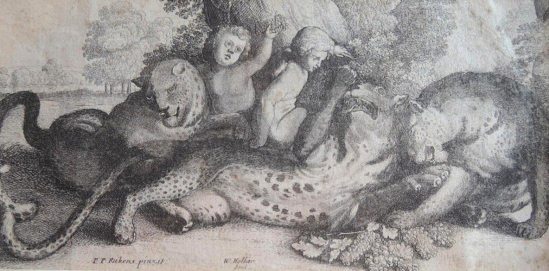 Peter Paul Rubens Etching (Flemish 1577-1640) - 2