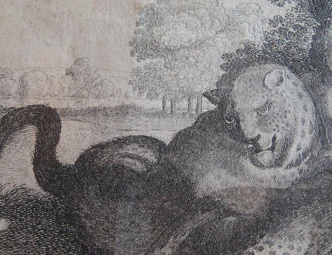 Peter Paul Rubens Etching (Flemish 1577-1640) - 5