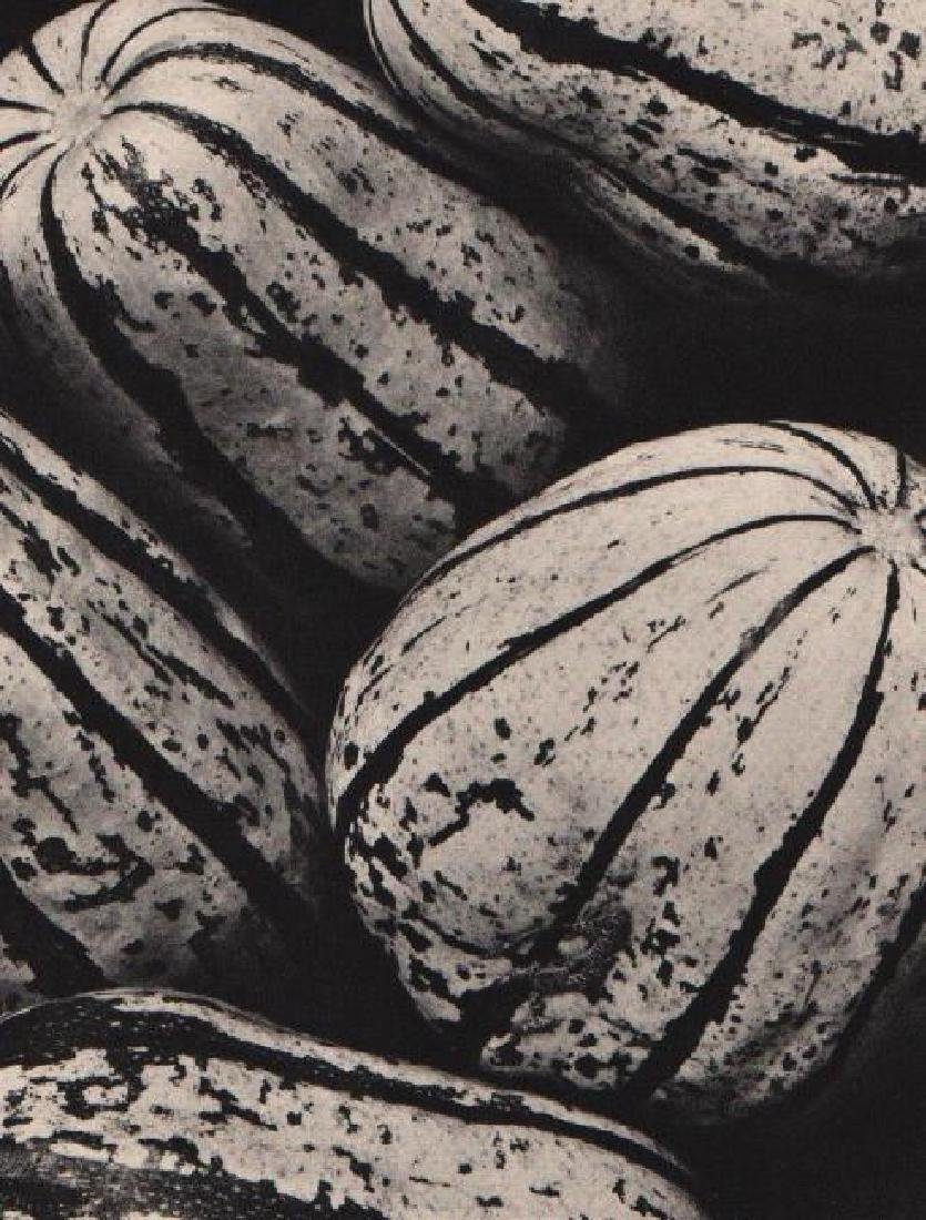 EDWARD WESTON - Melons