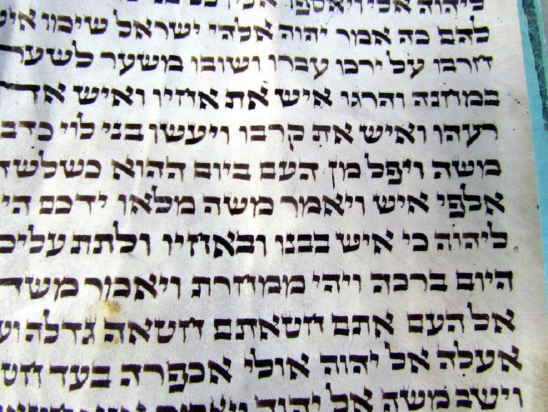 Torah Fragment Manuscript on Parchment - 3
