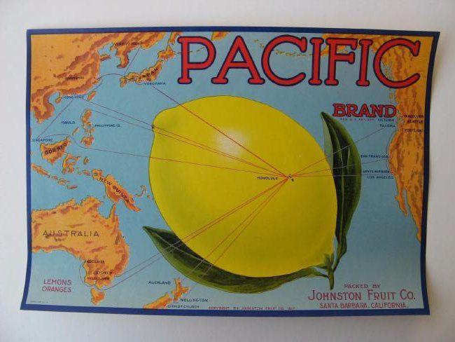 """Pacific Brand"" Lemons"