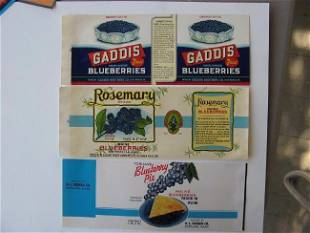 Blueberry Can Labels - 3 types