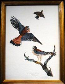 Carroll Tyson: Sparrow Hawks, 1920