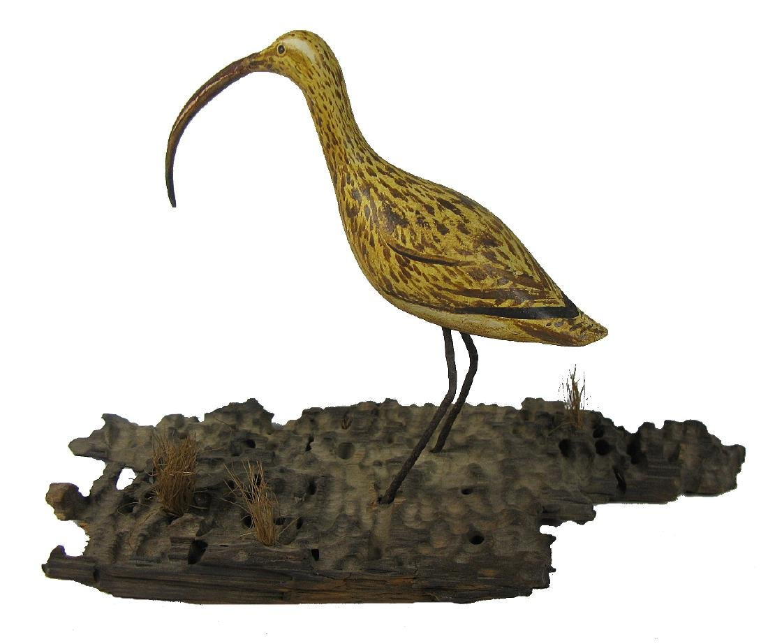 Long-billed Curlew Carving