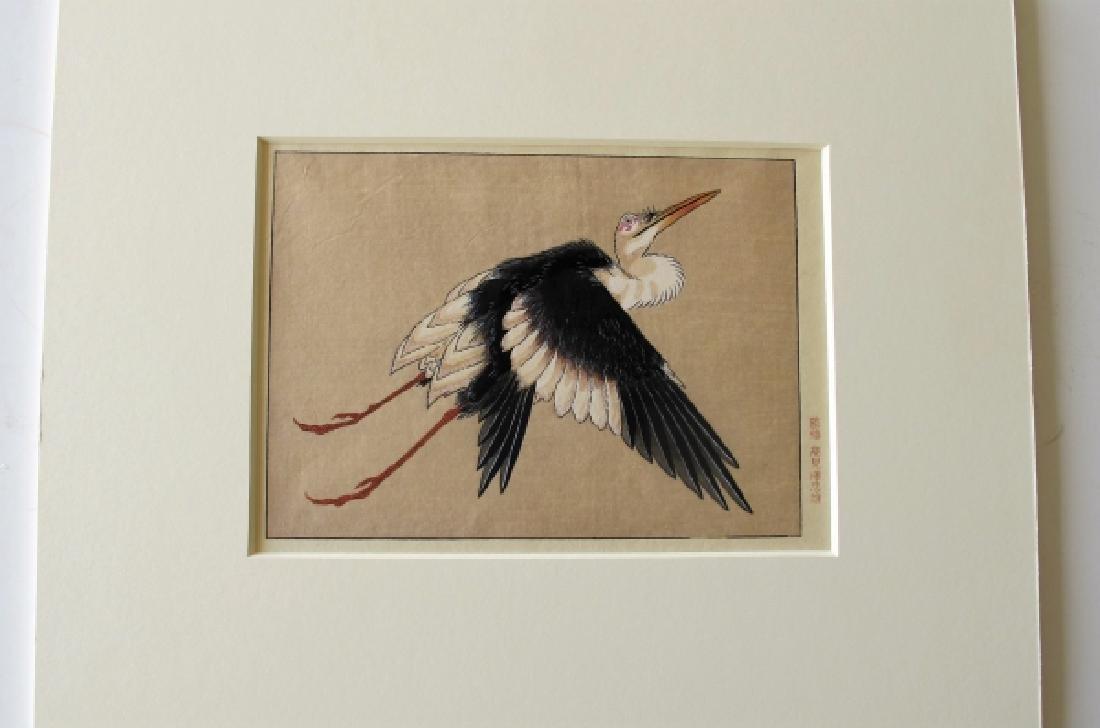 Unknown: Crane