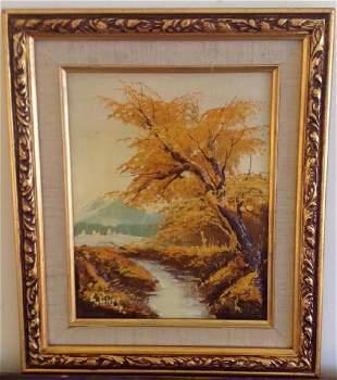 S. Hills: Creek, Trees, Mountain Landscape