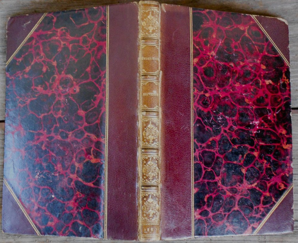 Underwoods by Robert Louis Stevenson