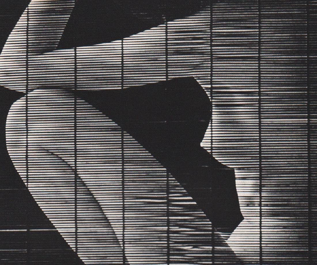 JOHN RAWLINGS - Bamboo Screen