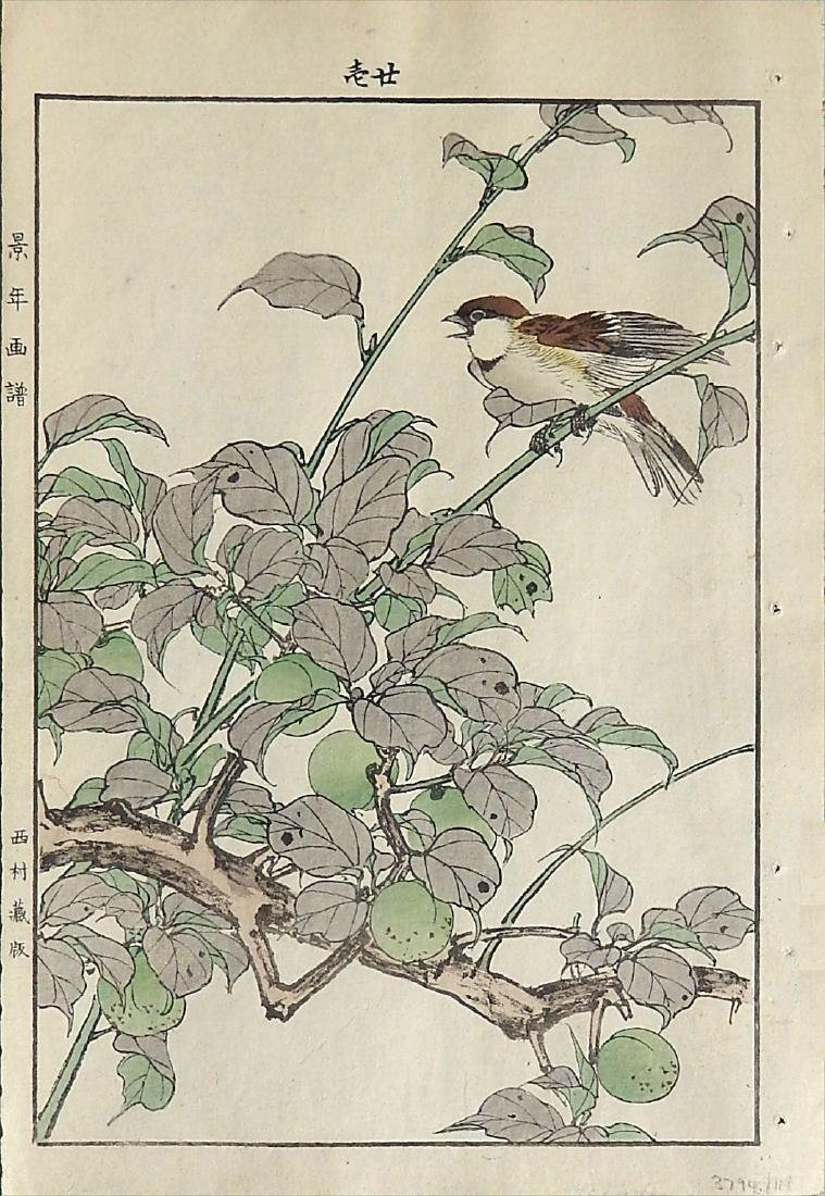 Imao Keinen: Russet Sparrow and Japanese Apricot